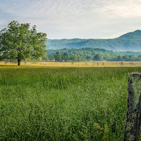 Cades Cove Sunrise by Kevin Stacey - Landscapes Mountains & Hills ( national park, tennessee, cades cove, smoky mountains )