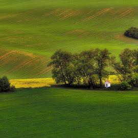 Chapel in the fields by Darja Pavlacká - Landscapes Prairies, Meadows & Fields ( chapel in the fields, south moravia, czech republic )