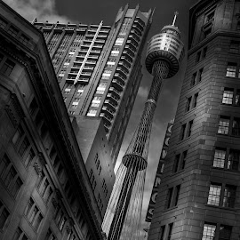 by Kevin Litchfield - Buildings & Architecture Office Buildings & Hotels ( #black and white sydney, #sydney australia, #www.kevlynimaging.com.au, #centrepoint tower )