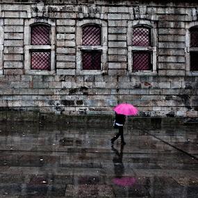 The pink umbrella by Jorge Maia - City,  Street & Park  Street Scenes ( street, umbrella, pink, portugal, porto )