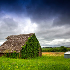 Weathered  by Ken Smith - Buildings & Architecture Decaying & Abandoned ( countryside, iowa, barn )