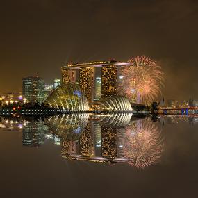 Fireworks by Nicholas Leong - City,  Street & Park  Vistas
