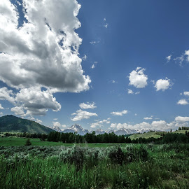 Just some clouds to make the day by Andrea Cansler - Landscapes Prairies, Meadows & Fields
