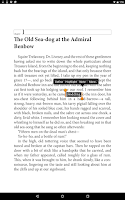 Screenshot of Bluefire Reader