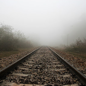Unseen Path by XeeShan Ch - Transportation Trains ( pakistan, fog, gujrat, trail, xeeshan, train, landscape, mist )
