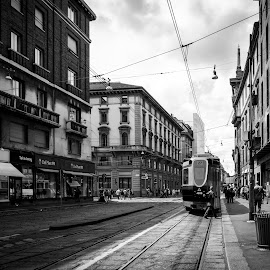 by Kevin Warrilow - City,  Street & Park  Street Scenes ( trams, milan, black and white, streets, italy, city )