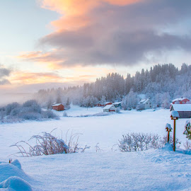 Home for christmas by Stian Krane - Landscapes Forests ( clouds, snow, christmas, trees, sun )
