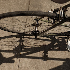 by Alan Cline - Transportation Bicycles