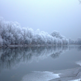 frozen river by Cosmin Popa-Gorjanu - Landscapes Waterscapes ( winter, ice, frost, trees, mureș, river )