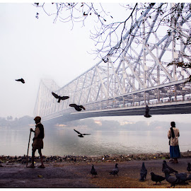 The Birdman by Sayan Panja - People Street & Candids ( riverside, bridge, birds, river )