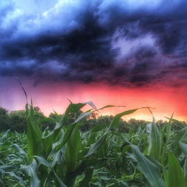 Before the rain  by Tracy Bumann - Landscapes Cloud Formations