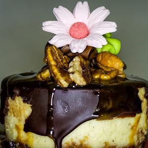Macro_food.jpg