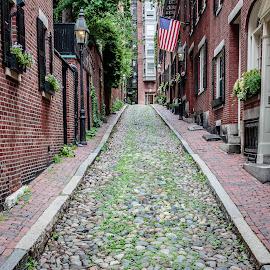 Acorn Street by David Long - City,  Street & Park  Street Scenes ( boston, back bay, acorn street )