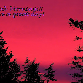 Morning Greeting by Becky Luschei - Typography Captioned Photos ( world, gratitude, greeting, deep reds, purples, early, morning )