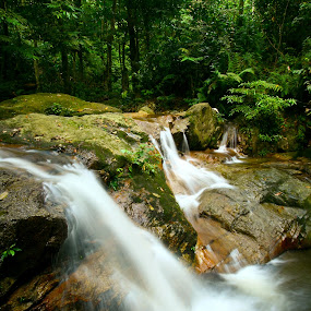 Flow of the jungle by Tan  Kian Yong - Landscapes Forests ( water, stream, jungle, waterfall, creek, resource, forest, gush )
