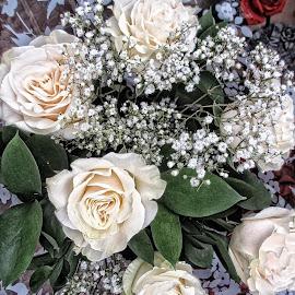 DNI disp 21 by Michael Moore - Flowers Flower Arangements