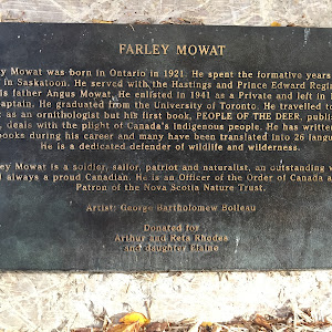 FARLEY MOWAT Farley Mowat was born in Ontario in 1921. He spent the formative years of his youth in Saskatoon. He served with the Hastings and Prince Edward Regiment as did his father Angus Mowat. He ...