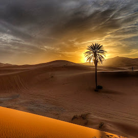 Sahara Sunset by Ritha Kartan - Landscapes Deserts ( #goldenhour #sunsethedessert )