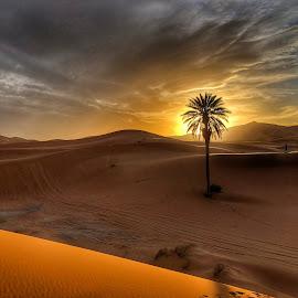 Sahara Sunset by Ritha Kartan - Landscapes Deserts ( #goldenhour #sunsethedessert )