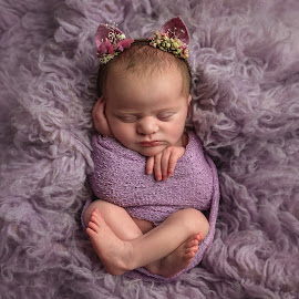 Dottie by Victoria Doyle - Babies & Children Babies ( wrapped, lilac, baby, kitty, newborn )