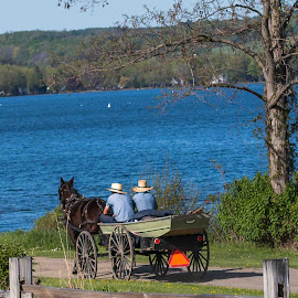 Gone fishing by Michael Wolfe - Transportation Other ( water, hats, amish, horse, wagon, trees, lake, boat,  )
