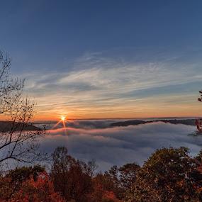 Sunrise over Cheat Canyon  by Jason Lemley - Landscapes Sunsets & Sunrises ( fog, fall, trees, canyon, sunrise )