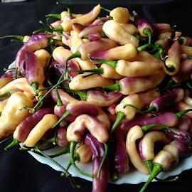 by Samir Kr Samanta - Food & Drink Fruits & Vegetables ( pepper, capsicumchinense, chinense, hotpeppers, chilli )