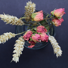 by Dipali S - Artistic Objects Other Objects ( wheat, vase, dried, decoration, still life, artistic, flowers, buds )