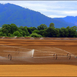 Getting Ready to Plant by Mina Thompson - Landscapes Prairies, Meadows & Fields ( sprinklers, field, oregon, grow, agriculture, plow )