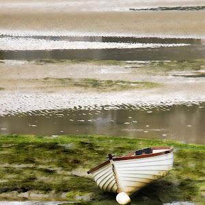 Rowboat 3 y.jpg