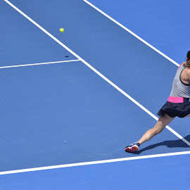 Groundstroke by Chris Wilson - Sports & Fitness Tennis ( melbourne, fitness, action, sports, tennis )