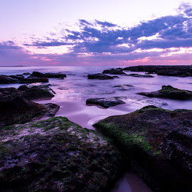 Soldiers Beach by Mel Stratton - Landscapes Beaches ( water, green, lighthouse, sunrise, beach, seascape, rocks )