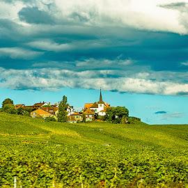 Village in the vineyards by Radu Eftimie - Landscapes Prairies, Meadows & Fields ( clouds, church, village, vineyards, switzerland, homes )