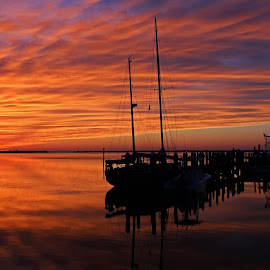A Tarpon Tryst by Michiale Schneider - Landscapes Sunsets & Sunrises ( water, clouds, orange, reflection, purple, nature, sunset, silhouette, landscape, boat, black )
