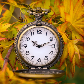 Autumn Time by Darrell Evans - Artistic Objects Other Objects ( face, pocket watch, time, minutes, seconds, numbers, clock, hands, watch, hours, winder )