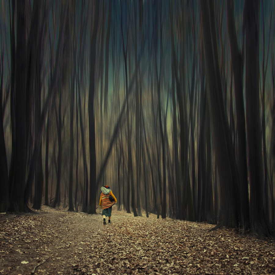 A long journey II by Caras Ionut - Digital Art People ( old, tree, woman, forest, leaf, walk, alone, mist )