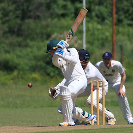 by John Davies - Sports & Fitness Cricket ( gloucestershire university, cricket, swansea university, university cricket )