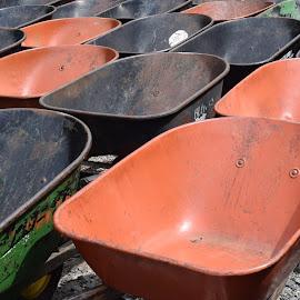 Wheelbarrows by Keith Heinly - Artistic Objects Other Objects ( farm, wheelbarrows, pumpkin, burts, georgia )