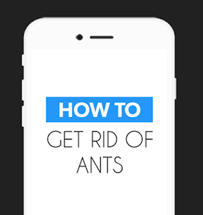 How To Get Rid of Ants‏‎ Fast - screenshot