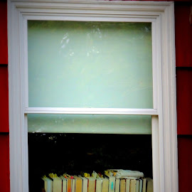 The Window by Becky Luschei - Buildings & Architecture Homes ( books, reading, window, intrigue, wonder, sanctuary, library )