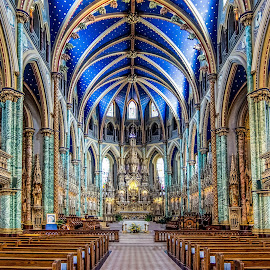 Notre Dame by Keith Sutherland - Buildings & Architecture Places of Worship ( interior, notre dame, church, ottawa )