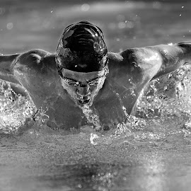 Fluid dynamics by Mark Tart - Sports & Fitness Swimming ( edhs, monochrome, b&w, high school, black and white, atheletics, black & white, sports, el dorado high school, photography, swimming, competition )