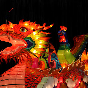 Light Festival by Kristen O'Brian - Artistic Objects Other Objects ( lights, parade, dragon, christmas, festival )