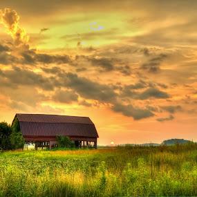 by Flora Ehrlich - Landscapes Prairies, Meadows & Fields ( michigan )