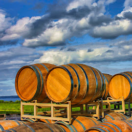 Wine barrels by Ruth Sano - Artistic Objects Other Objects ( clouds, barrels, wine barrels, colorful,  )
