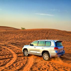 Dubai Desert Safari by Kyen Ang - Landscapes Deserts