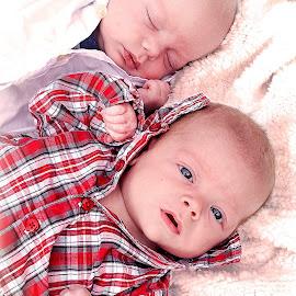 Dylan & Christopher, 9 wk. old twins by Nancy Senchak - Babies & Children Babies