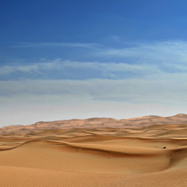 UAE Desert Landscape by Danette de Klerk - Landscapes Deserts ( sand, barren, dunes, desert, dune, landscape )