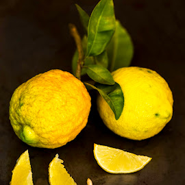 Lemons by Susan Pretorius - Food & Drink Fruits & Vegetables