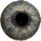 Eye Diagnosis 1.2 Apk